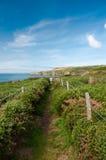 De Weg van de kust Royalty-vrije Stock Foto