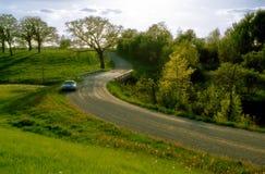 De weg van de lente Stock Fotografie