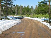 De weg van de lente Stock Foto's