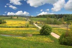 De weg van de lente royalty-vrije stock fotografie