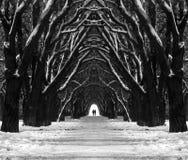 De weg van de mysticus Stock Afbeelding