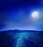De weg van de nacht Royalty-vrije Stock Afbeeldingen