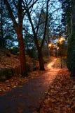 De weg van de nacht Stock Foto