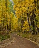 De Weg van de Pas van Ophir van Colorado Stock Afbeelding