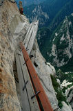 De weg van de plank Stock Foto