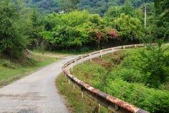 De weg van de plattelandsberg met roze struik en oude roestige omheining stock afbeelding