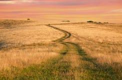 De weg van de savanne Royalty-vrije Stock Afbeelding