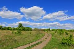 De weg van de sleur in steppe Stock Afbeelding