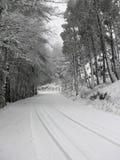De weg van de sneeuw Stock Afbeeldingen