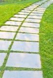 De weg van de steen met eenden Stock Fotografie