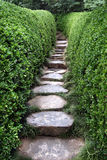 De weg van de steen in tuin het plaatsen Royalty-vrije Stock Afbeeldingen