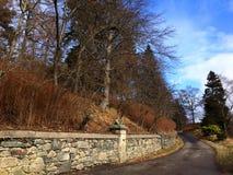 De weg van de steenhaag Stock Foto