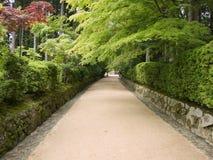 De weg van de tempel Royalty-vrije Stock Afbeeldingen