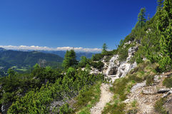 De weg van de trekking in de Alpen Friuli. Italië Royalty-vrije Stock Fotografie