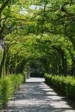 De weg van de tuin royalty-vrije stock afbeelding