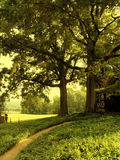 De Weg van de tuin Royalty-vrije Stock Fotografie