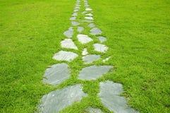 De weg van de tuin Stock Foto