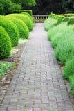De weg van de tuin in kasteel Hatley royalty-vrije stock foto's