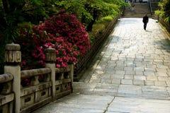 De Weg van de Tuin van Japanse Stock Afbeeldingen