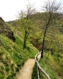 De Weg van de wandeling Stock Foto