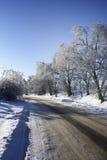 De weg van de winter. Royalty-vrije Stock Fotografie