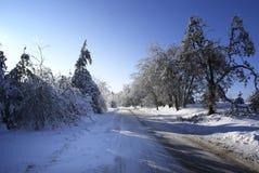 De weg van de winter. Royalty-vrije Stock Afbeeldingen