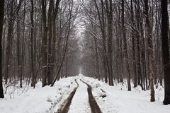 De weg van de winter Royalty-vrije Stock Foto's