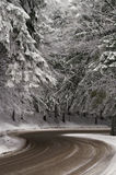 De weg van de winter Royalty-vrije Stock Fotografie