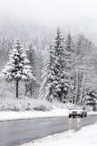 De weg van de winter Stock Foto