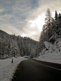 De weg van de winter Stock Foto's