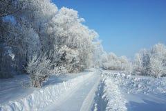 De weg van de winter aan hout Stock Foto's
