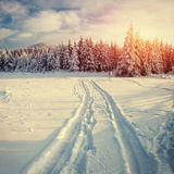 De weg van de winter Geheimzinnig landschap Stock Foto's