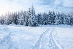 De weg van de winter Geheimzinnige landschaps majestueuze bergen Royalty-vrije Stock Fotografie