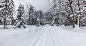 De Weg van de winter, Sixt Fer een Cheval, Frankrijk royalty-vrije stock fotografie