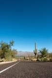 De Weg van de woestijn Royalty-vrije Stock Fotografie