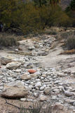 De Weg van de woestijn Stock Afbeelding