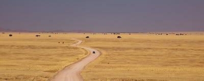 De weg van de woestijn in Namibië   Royalty-vrije Stock Foto