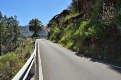 De weg van Gran Canaria stock foto
