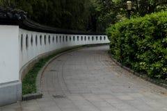 De weg van groene bomen in het park stock fotografie