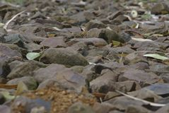 De weg van de grondoppervlakte maakte kiezelstenen en stenen op stock foto's