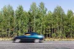 De weg van het asfalt in het bos Stock Afbeeldingen
