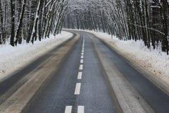 De weg van het asfalt in de winter stock fotografie