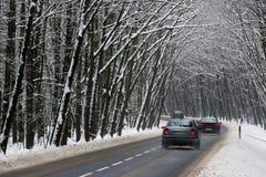 De weg van het asfalt in de winter royalty-vrije stock afbeeldingen