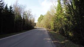 De weg van het asfalt in het bos stock footage