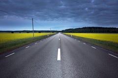 De weg van het asfalt op verkrachtingsgebied Stock Foto's