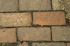 De Weg van het baksteenterras Royalty-vrije Stock Afbeeldingen