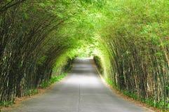 De weg van het bamboe Royalty-vrije Stock Fotografie