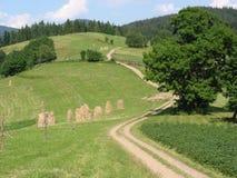 De weg van het dorp Royalty-vrije Stock Afbeeldingen