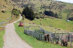 De weg van het grint op landbouwbedrijfgebied Royalty-vrije Stock Afbeeldingen