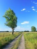 De weg van het land Stock Foto's